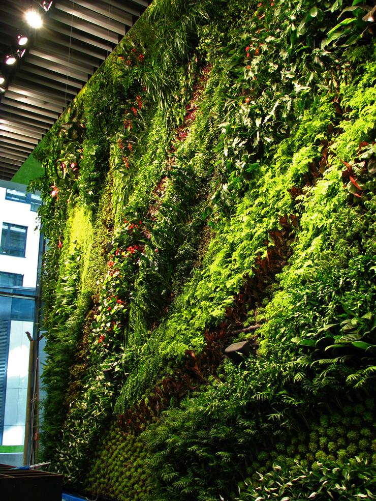 花墙 景观 墙 植物 740_985 竖版 竖屏