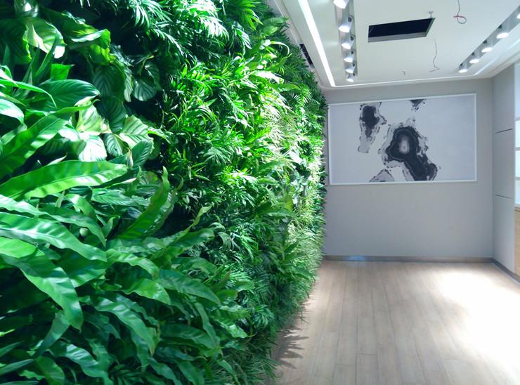 别墅会所墙面绿化|别墅会所墙面绿化|室内植物墙|北京