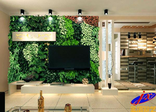 室内立体绿化之电视背景墙