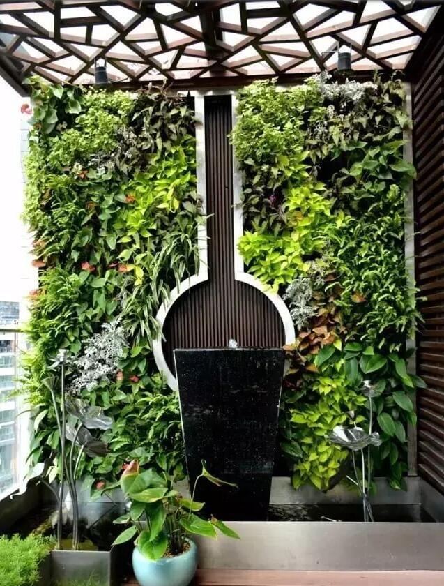 植物墙,绿植墙,室内植物墙,室内绿植墙定制