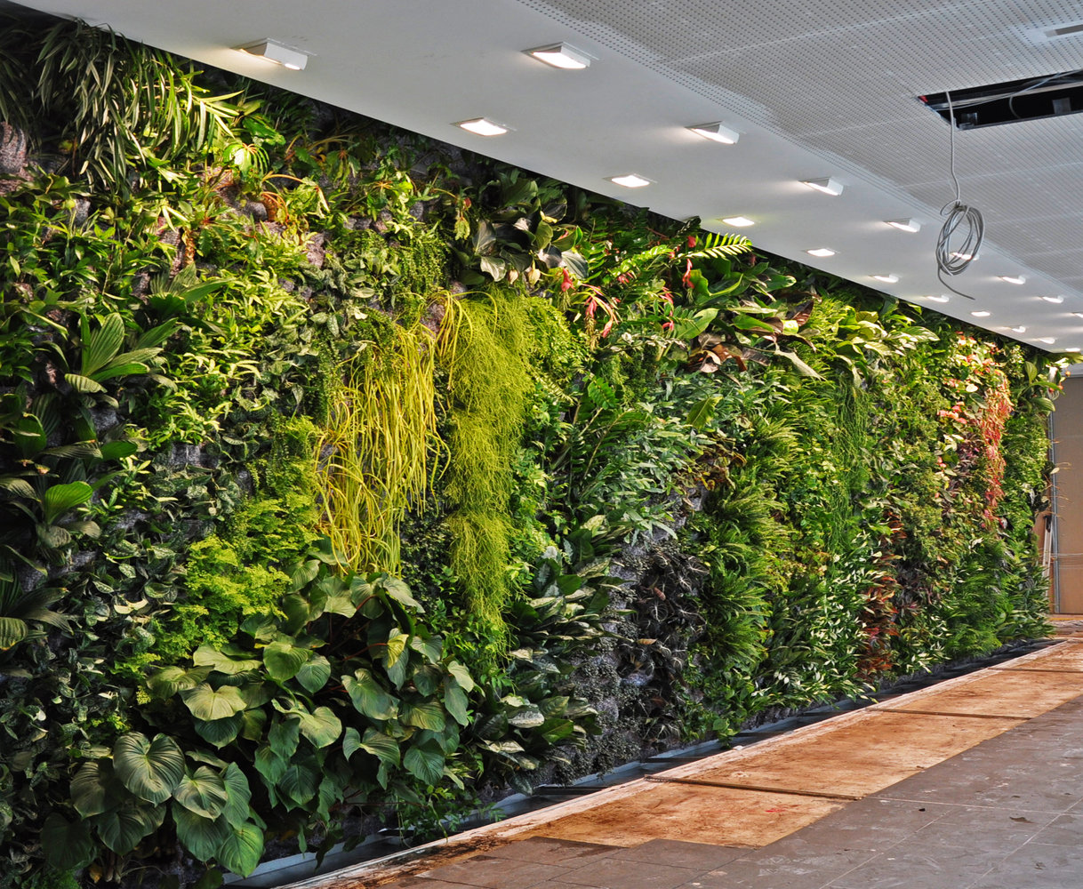 智能墙面绿化 北京室内植物墙定做 首选金信欧艺植物墙
