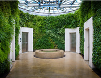 别墅会所墙面绿化