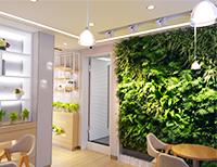 家庭植物墙