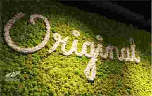 北京永生苔藓logo墙