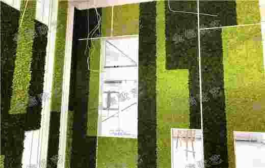 金信欧艺打造恒通商务园60㎡永生苔藓墙案例