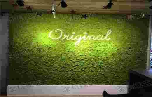 某健身房永生苔藓logo墙完工,永生苔藓墙案例