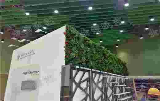 世园会仿真植物墙