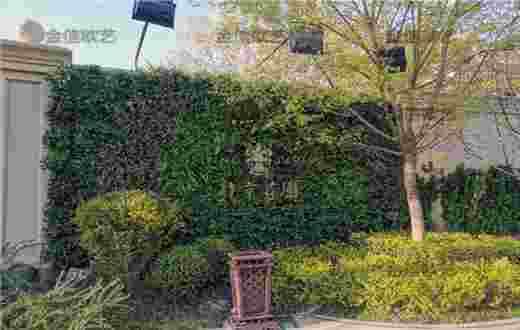 北京庄园植物墙案例