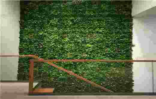 金科王府仿真绿植墙